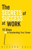The secrets of success at work 10 steps to accelerating your career