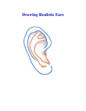 Drawing Realistic Ears