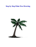 Step by Step Palm Tree Drawing
