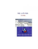 Oracle PLSQL Language