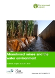 Abandoned mines and the water environment