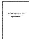 Tiêm vaccin phòng thủy đậu khi nào?