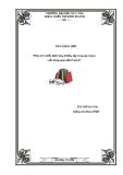 Báo cáo: Phân tích chiến lược tăng trưởng tập trung tại công ty viễn thông quân đội (Viettel)