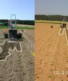 The environmental consequences of adopting conservation tillage in Europe: reviewing the evidence
