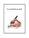 La carnation au stylo