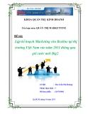 Đề Tài:  Lập kế hoạch Marketing cho Beeline tại thị trường Việt Nam vào năm 2011 thông qua gói cước mới Big2