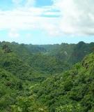 Khí hậu, cộng đồng và đa dạng sinh học