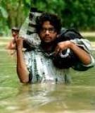 Ảnh của GMB Akash: Ở nơi không có mượt mà