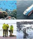 Sức ép môi trường là gì?