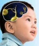 Trí não trẻ phát triển như thế nào