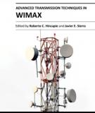 ADVANCED TRANSMISSION TECHNIQUES IN WIMAX