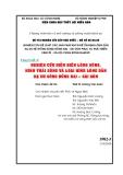 Chuyên đề 4: NGHIÊN CỨU DIỄN BIẾN LÒNG SÔNG, HÌNH THÁI SÔNG VÀ LOẠI HÌNH LÒNG DẪN HẠ DU SÔNG ĐỒNG NAI – SÀI GÒN