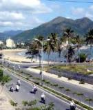 Tài liệu: Các công cụ kinh tế trong quản lý môi trường ở Việt Nam