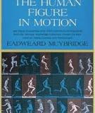The humam figure in motion