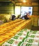 Bảo quản thức ăn gia súc
