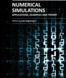 NUMERICAL SIMULATIONS APPLICATIONS, EXAMPLES AND THEORY