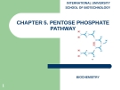 CHAPTER 5. PENTOSE PHOSPHATE PATHWAY