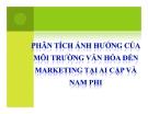 Phân tích ảnh hưởng của môi trường văn hóa  đến marketing  tại Ai Cập và nam Phi