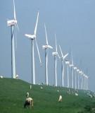 Báo cáo tổng kết chuyên đề: Nghiên cứu lựa chọn công nghệ và thiết bị để sử dụng năng lượng gió trong sản xuất, sinh hoạt nông nghiệp và bảo vệ môi trường