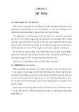 CÁC YẾU TỐ CƠ SỞ CỦA ĐỒ HỌA , CHƯƠNG 2 TÔ MÀU