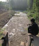 Nghiên cứu hiện trạng ô nhiễm môi trường nước và những ảnh hưởng đến sức khỏe phụ nữ trồng đay