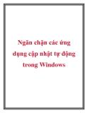 Ngăn chặn các ứng dụng cập nhật tự động trong Windows