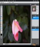 Hướng dẫn chỉnh sửa ảnh trong Google Drive với Pixlr