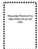 Đăng nhập Windows 8 tự động không cần gõ mật khẩu