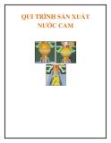 Qui trình sản xuất nước cam