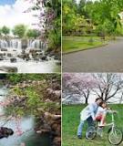Phát triển đô thị bền vững - đô thị xanh là sứ mệnh của kiến trúc sư