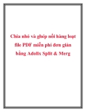 Chia nhỏ và ghép nối hàng loạt file PDF miễn phí đơn giản bằng Adolix Split & Merg