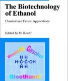 The Biotechnology of Ethanol