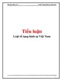 Tiểu luận: Luật tố tụng hình sự Việt Nam