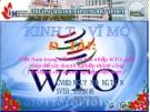 Đề tài: Việt Nam trong tiến trình hội nhập WTO, giải pháp để các doanh nghiệp thành công ( áp dụng cho doanh nghiệp việt nam