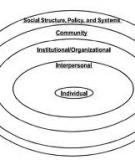An Ecological Perspective on Health Promotion Programs