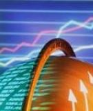 Thị trường chứng khoán (Stock market)