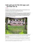 Vườn quốc gia Cát Tiên-Viên ngọc xanh cần được bảo vệ