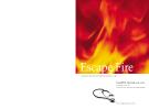Escape Fire - lessons for the future of health care