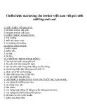 Tiểu luận: Chiến lược marketing cho beeline việt nam với gói cước mới big and cool