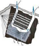 Đôi nét về công nghệ khí hóa than