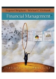 Financial Management Theory and Practice_1