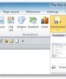 Hướng dẫn sử dụng tính năng Screeshot trong Microsoft Word 2010