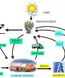 Luận Văn: Tình hình và giải pháp sử dụng hầm ủ Biogas