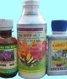 Luận văn đề tài : Nghiên cứu ảnh hưởng của việc sử dụng thuốc bảo vệ thực vật đến đa dạng sinh học ở vùng chuyên canh rau