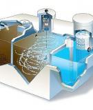 Đề Tài: Vi sinh vật trong quá trình  xử lý nước thải sinh học