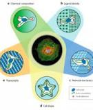 Hydrogels in Regenerative Medicine