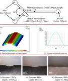 Three-Dimensional Micro-Channel Fabrication in Polydimethylsiloxane (PDMS) Elastomer