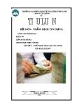 Tiểu luận: Thẩm định năng lực tài chính của khách hàng