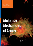 MOLECULAR MECHANISMS OF CANCER