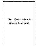 Chọn SEO hay Adwords để quảng bá website?